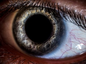 Macro close-up shot of human eye